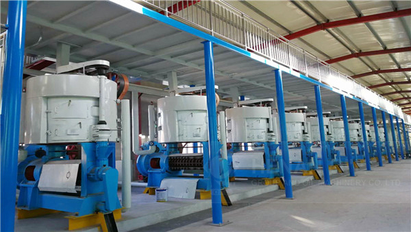 olexa – screw press for oil extraction